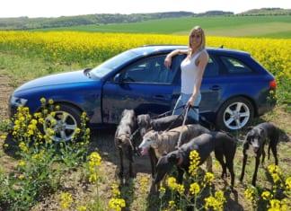 Audi A4 Avant 2.0 TDI quattro kutyákkal