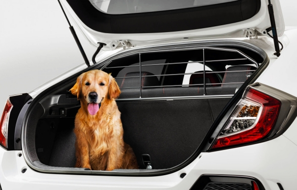 kutya melle milyen kocsit karpit csomag