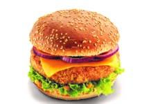 halburger palagyi eszter omv