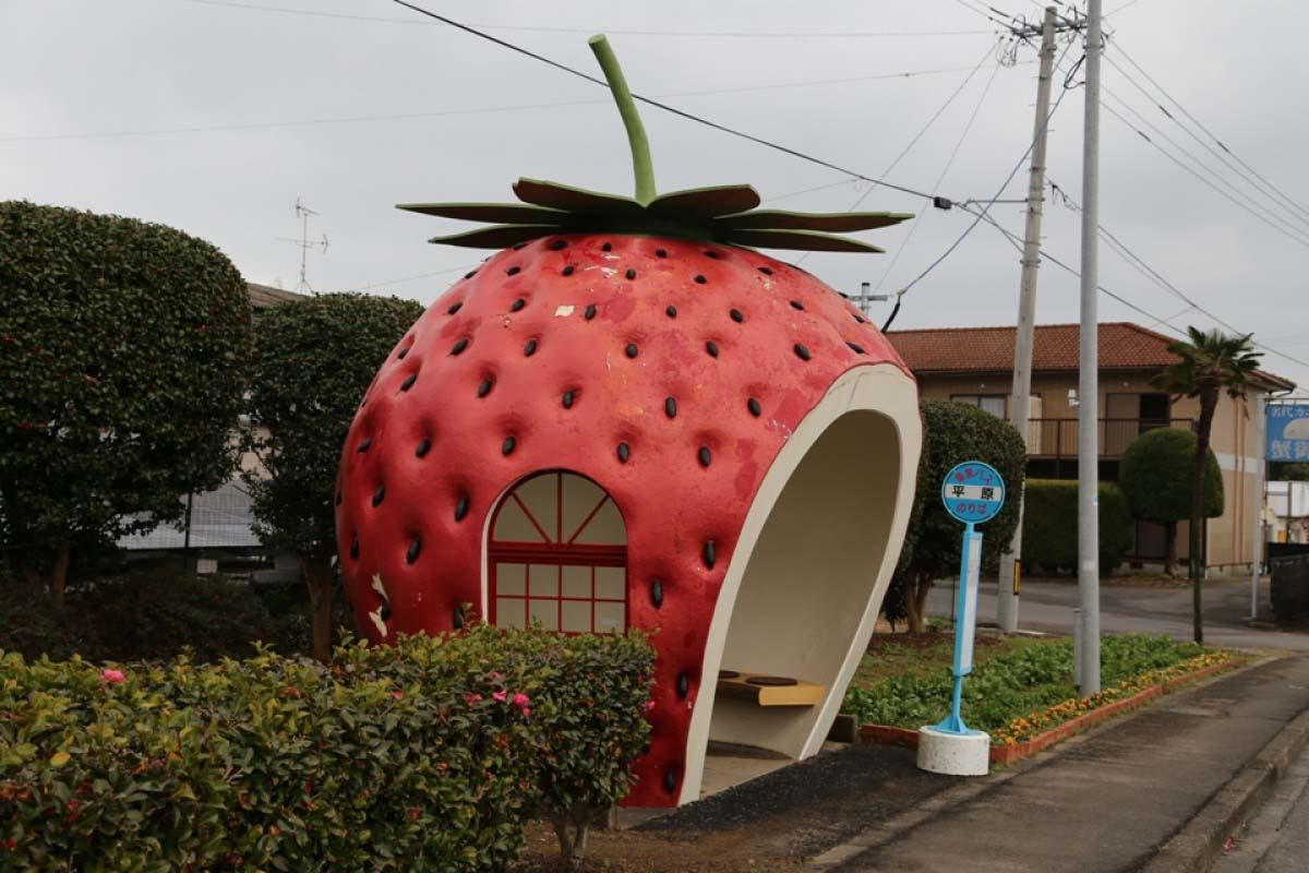 kulonleges buszmegallok japan