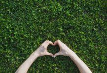 kornyezetvedelem-fenntarthato-szepsegmarka