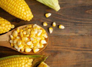 kukoricás receptek csemegekukorica
